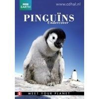 Pinguins Undercover - BBC Earth - DVD