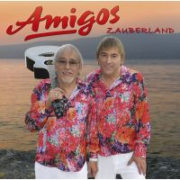 Amigos - Zauberland - DVD