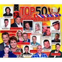Woonwagenhits Top 50 - Deel 13 - 2CD